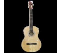 dan guitar chateau C08-C10