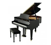 dan piano essex egp-155t