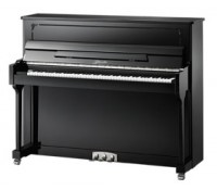 dan piano ritmuler R1