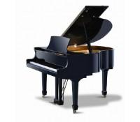 dan piano ritmuller GP148R1