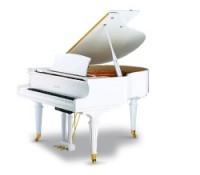 dan piano ritmuller gd160r