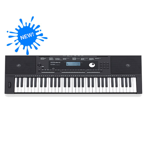 dan-organ-keyboard-roland-e-x20
