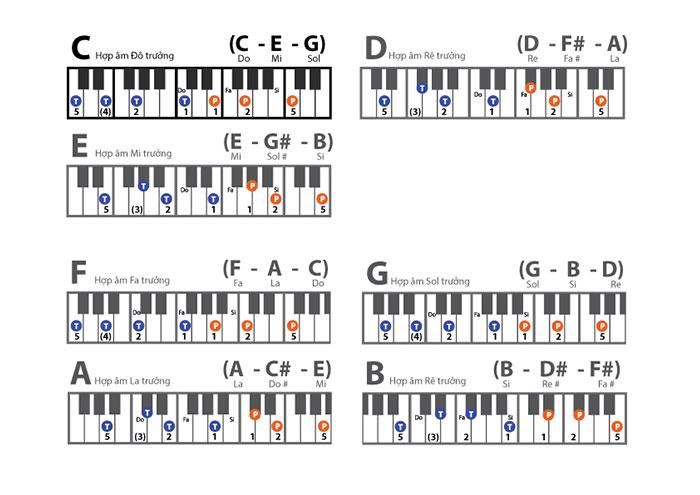 hop-am-piano-truong