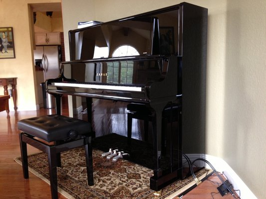 chon mua dan piano cu