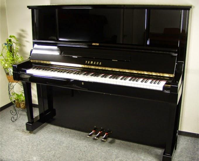 dan piano co cu