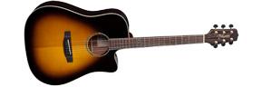 dan-guitar-acoustic-takamine-eg363sc-sv