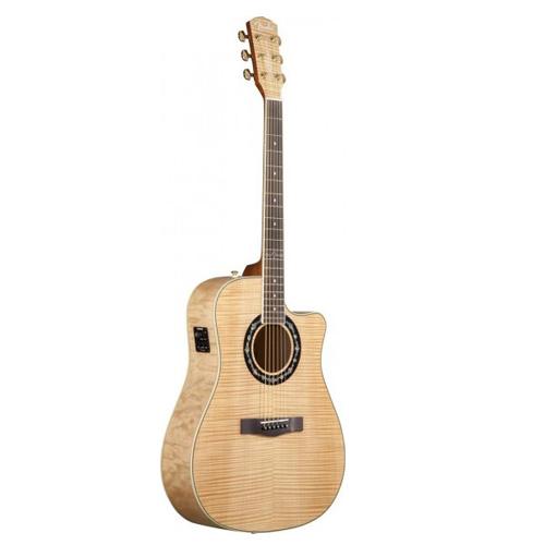 Guitar-Fender-T-Bucket-400CE