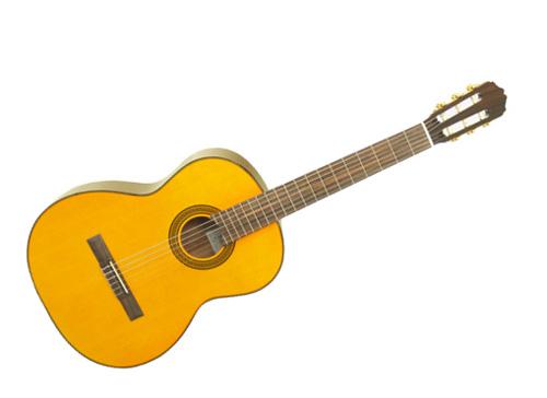 dan-guitar-takamine-d30