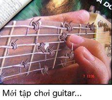 hoc guitar