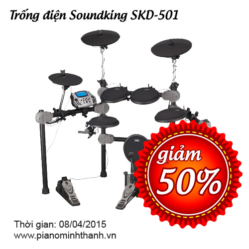 giam 50 trong dien soundking skd501