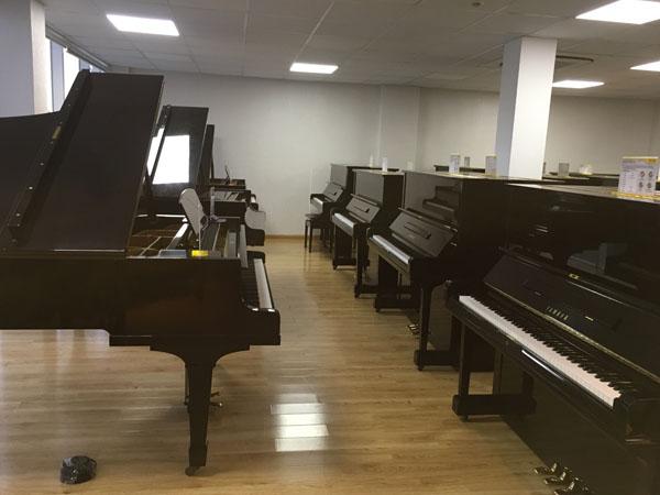 dan-piano-cu-viet-thuong-369