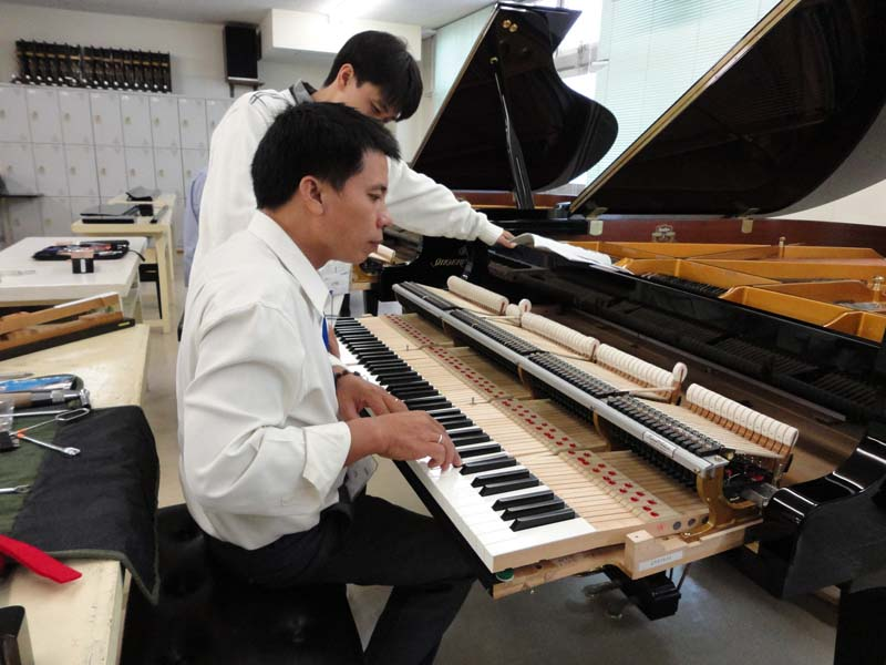 len day dan piano cu
