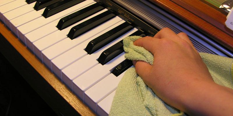 meo cham soc dan piano dung cach