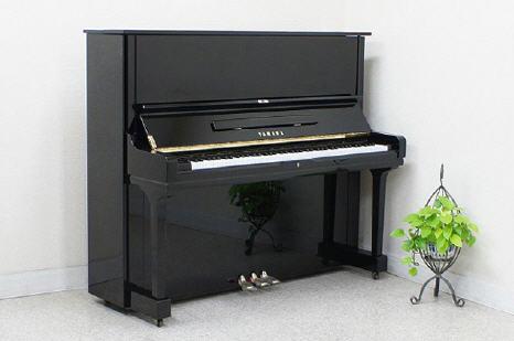 khong dat dan piano sat tuong