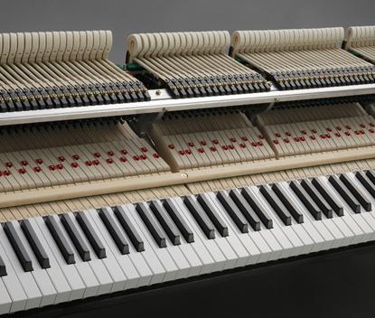 phim dan piano dai hon
