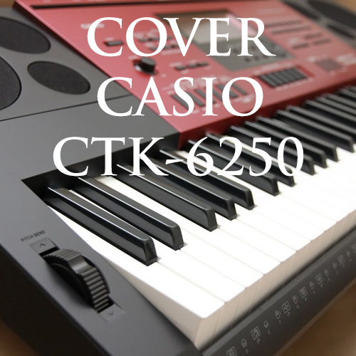 Video clip demo đàn organ Casio CTK-6250
