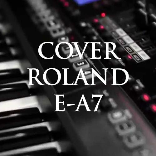 Clip cover trên organ Roland E-A7