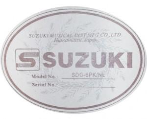 guitar suzuki