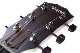 dan guitar taylor 110ce