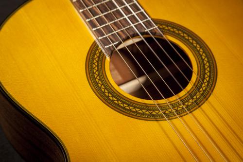 dan guitar takamine gc1ce nat 5