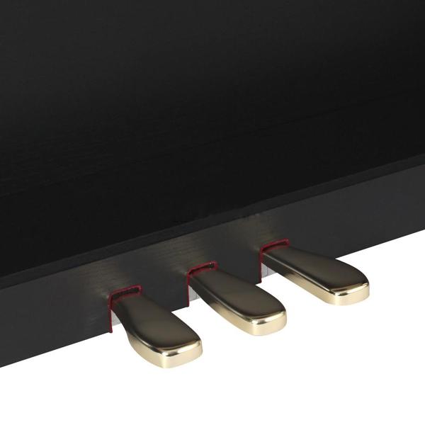 pedal piano dien casio ap650