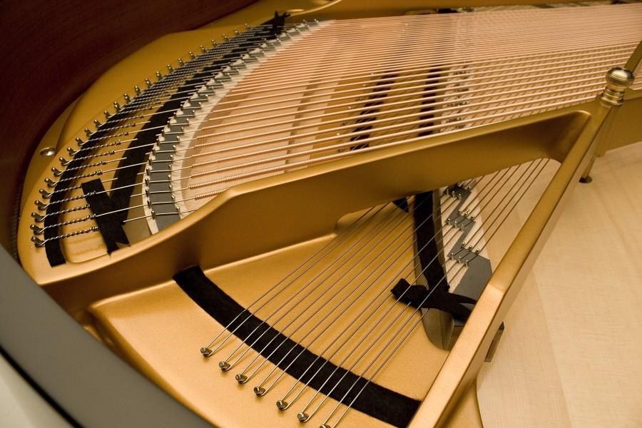 dan piano kawai RX2