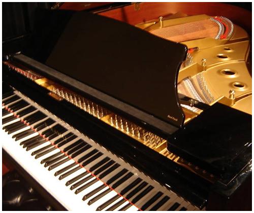 dan piano kawai RX3