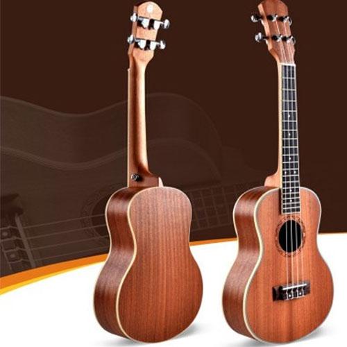 dan ukulele deviser uk-21-30