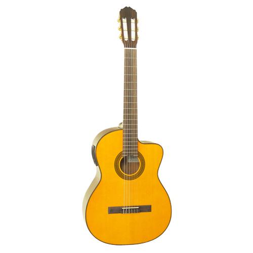 dan guitar takamine ed30c