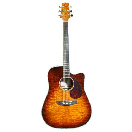 dan guitar takamine eg333c
