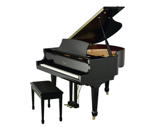 dan piano essex EGP-155R