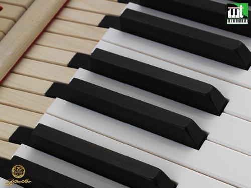 dan piano ritmuller GP275R1