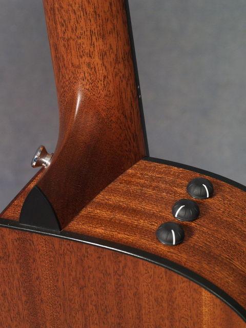 dan guitar taylor 312ce